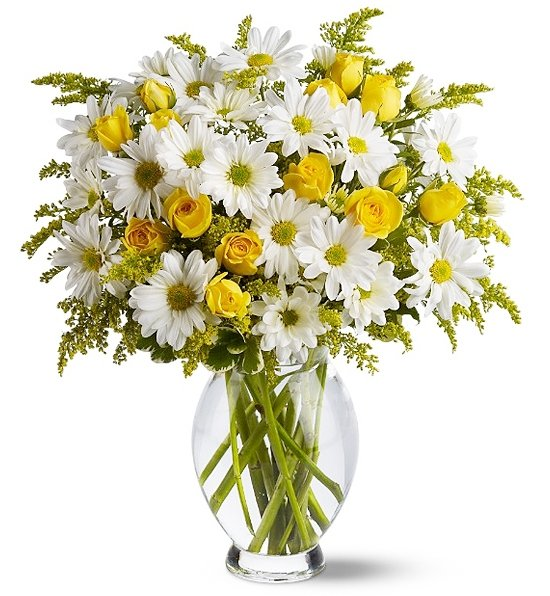 http://www.1stop-tucson-florists.com/images/super/7610a_Daisy-Days-Deluxe.jpg